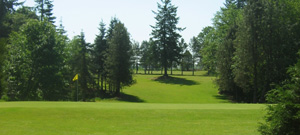 Sandelie Golf Course